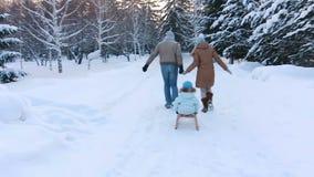 Padres jovenes sledding su niño en un callejón del parque almacen de video