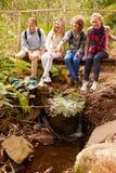 Padres y adolescencias que se sientan en un puente en un bosque, vertical Foto de archivo libre de regalías