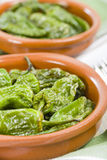 Padron Peppers Royalty Free Stock Images