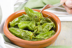 Padron Peppers Royalty Free Stock Photos