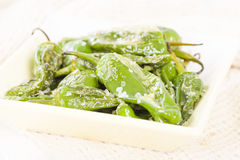 Padron Peppers. Fried Spanish green peppers with olive oil and sea salt. Traditional Spanish tapas Royalty Free Stock Photo