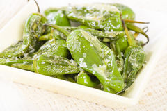 Padron Peppers. Fried Spanish green peppers with olive oil and sea salt. Traditional Spanish tapas Stock Images