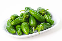 Padron peppers Royalty Free Stock Photo