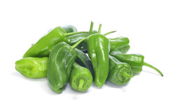 Padron peppers typical of Spain Stock Image