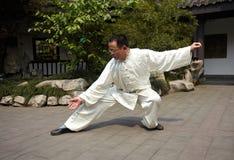 Padrone di Taiji Fotografia Stock