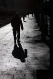 Paeando per morgon av söndag Fotografering för Bildbyråer