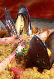Paella. Spanish paella with rice, prawns and clams Royalty Free Stock Photography