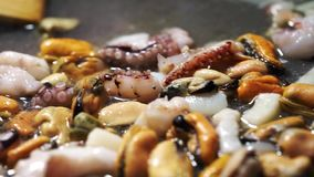 paella stock video