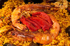 Paella Close Up Royalty Free Stock Photo