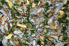 Paella with mussels and rice Royalty Free Stock Image