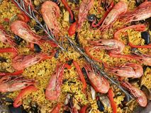 Paella, Prawns and Rosemary stock images