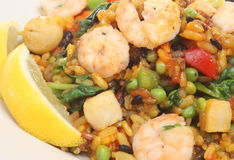 Paella with Prawns, Shrimp & Scallops Stock Photo