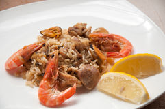 Paella ready meal with shrimp Royalty Free Stock Images