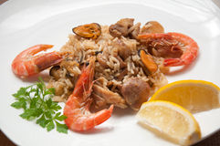 Paella ready meal with shrimp Stock Photos