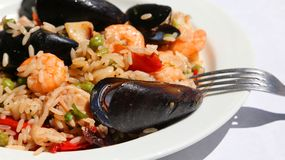Paella rice dish with mussels, shrimp and green peas with fork Royalty Free Stock Photos