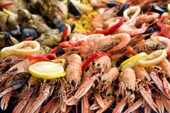 Paella1 Royalty Free Stock Photo