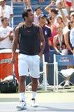 Paes Leander bij de V.S. opent 2008 (4) Stock Foto
