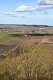 Paesaggi agricoli Fotografie Stock Libere da Diritti