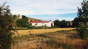Paesaggi agricoli Immagine Stock Libera da Diritti