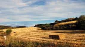 Paesaggi agricoli Fotografie Stock