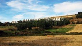 Paesaggi agricoli Fotografia Stock