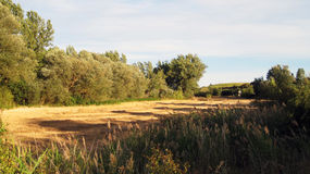 Paesaggi agricoli Fotografia Stock Libera da Diritti