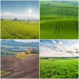 Paesaggi agricoli differenti Immagini Stock Libere da Diritti