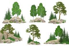 Paesaggi con gli alberi e le rocce Immagini Stock