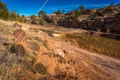 Paesaggi dell'arenaria dell'Arizona Fotografia Stock Libera da Diritti