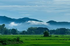 Paesaggi della sfuocatura della passeggiata della nebbia di mattina, montagna Fotografie Stock Libere da Diritti