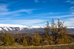 Paesaggi delle montagne della Repubblica di Altai all'autunno, Immagine Stock Libera da Diritti