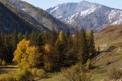 Paesaggi delle montagne di Altai in autunno Fotografia Stock Libera da Diritti