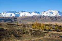 Paesaggi delle montagne di Altai, Repubblica di Altai Immagine Stock Libera da Diritti