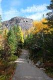 Paesaggi di caduta, Canada Fotografie Stock