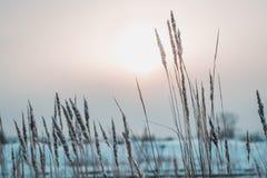 Paesaggi di Ural Fotografia Stock