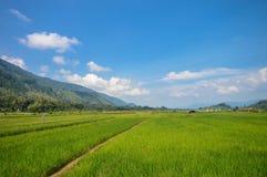 Paesaggi panoramici nell'isola di Samosir, lago Toba, la Sumatra Settentrionale l'indonesia Fotografia Stock Libera da Diritti
