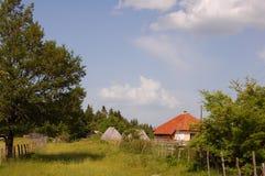 Paesaggi rurali Immagine Stock