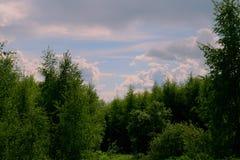 Paesaggi rurali Immagine Stock Libera da Diritti