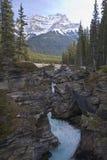 Paesaggi scenici in Jasper National Park, Alberta, Canada Fotografia Stock Libera da Diritti