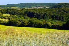 Paesaggio Immagine Stock