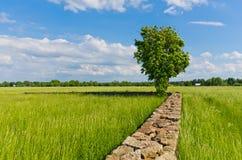 Paesaggio Fotografie Stock