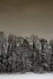 Paesaggio #5 della neve Fotografie Stock