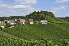 Paesaggio #5, Stuttgart della vigna Fotografie Stock Libere da Diritti