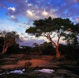 paesaggio Fotografie Stock Libere da Diritti
