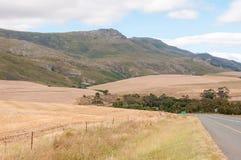 Paesaggio accanto alla strada principale del N2, Sudafrica Fotografie Stock