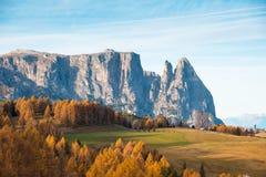 Paesaggio affascinante di autunno in Alpe di Siusi, Italia, Dolomiti Immagine Stock Libera da Diritti