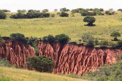 Paesaggio africano Immagine Stock