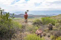Paesaggio africano con l'anfora Fotografia Stock