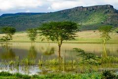 Paesaggio africano con la riflessione Fotografia Stock Libera da Diritti