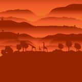 Paesaggio africano con la siluetta animale Immagini Stock Libere da Diritti